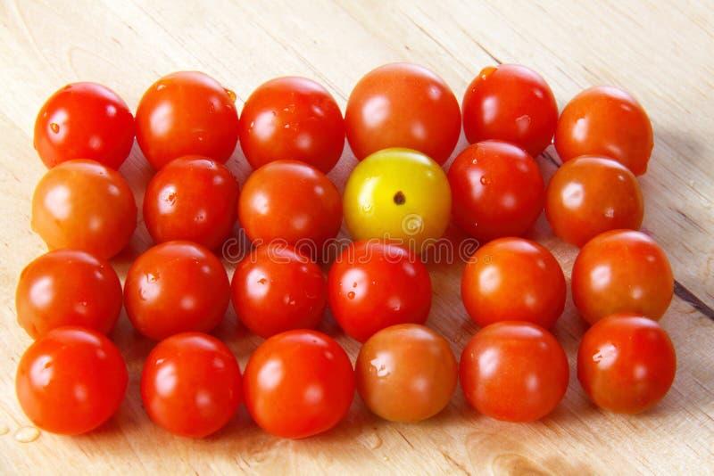 12 ντομάτες κερασιών στοκ φωτογραφίες