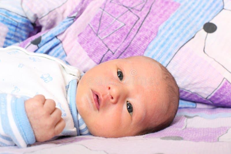 12 старой дней newborn стоковые фотографии rf