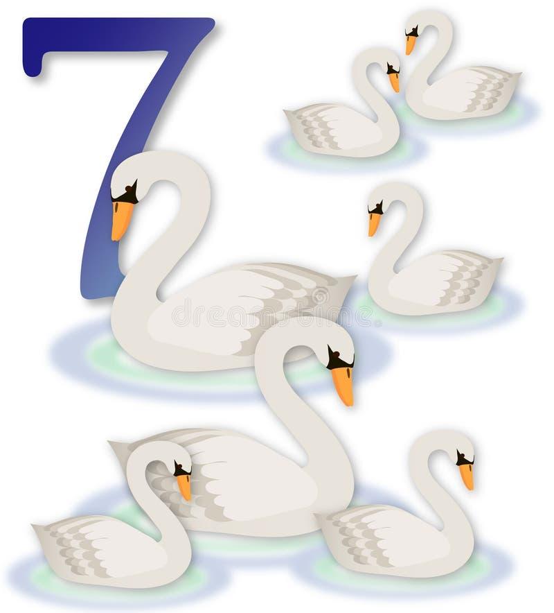 12 días de la Navidad: 7 cisnes una natación stock de ilustración