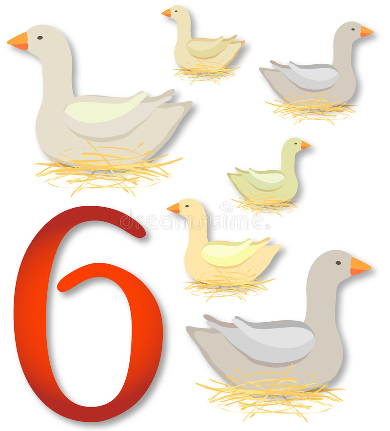 12 jours de Noël : 6 oies une pose illustration libre de droits