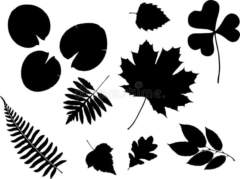 12c ustawiający ikona liść royalty ilustracja