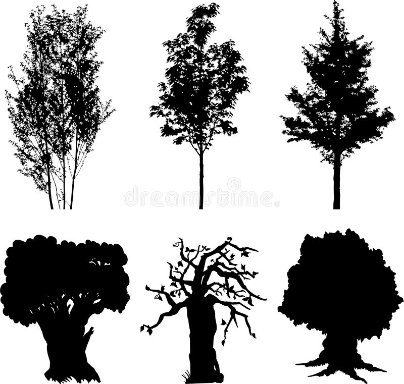 13个查出的集合结构树 库存例证