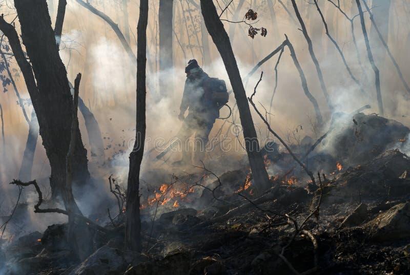 13 pożarniczy lasowy stłumienie zdjęcie stock