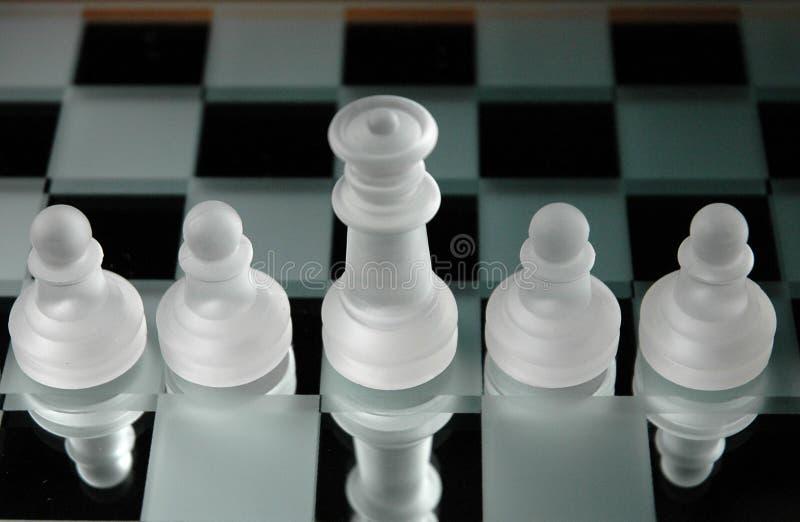 13 schackstycken arkivbild
