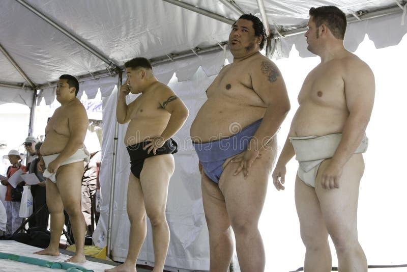 13 zapaśnik sumo fotografia stock