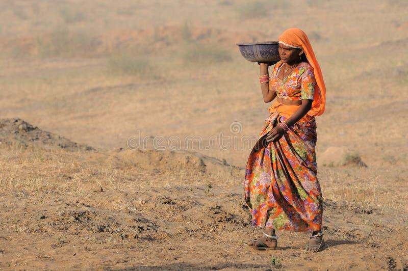 14 2009年骆驼puskar公平的11月 免版税库存照片