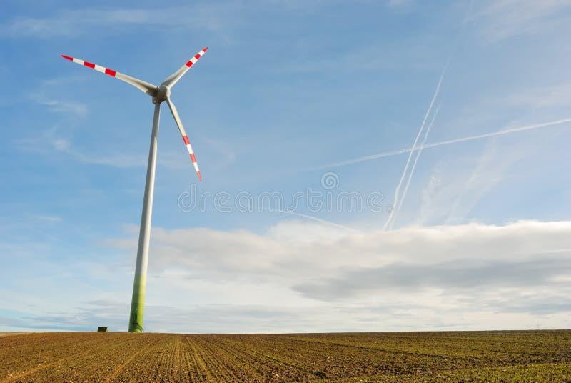 16 отсутствие ветрянки стоковое изображение rf