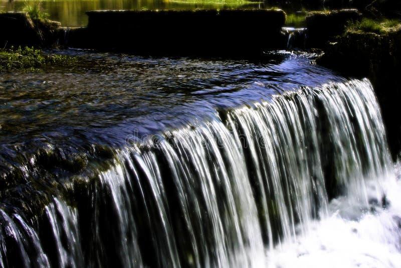 17 herisson waterscape zdjęcie stock