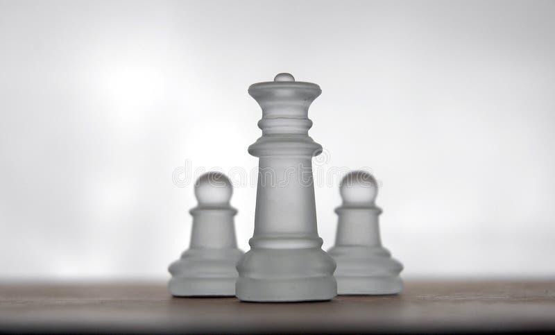 17 schackstycken royaltyfri bild