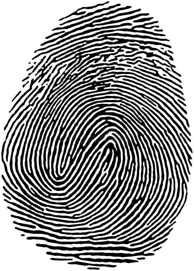 18指纹 向量例证