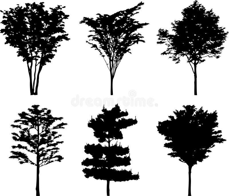 19个查出的剪影结构树 库存例证
