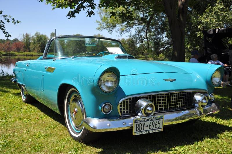 1956 Ford Thunderbird stock photography