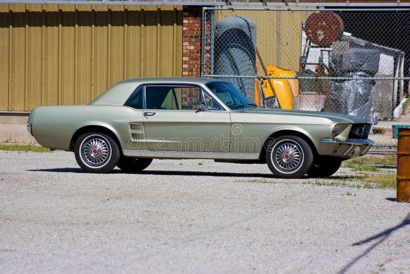 1967 coupe brodu mustang fotografia royalty free