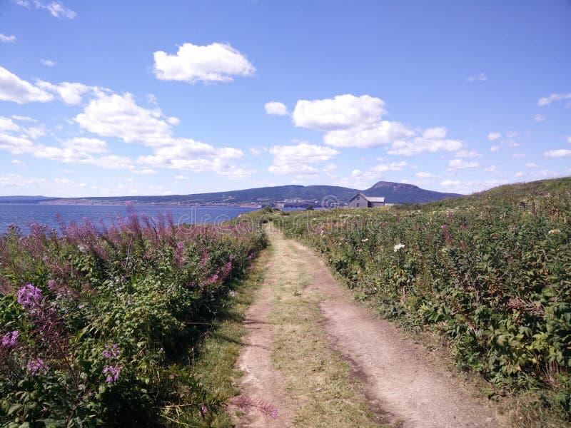 197 - Parc de l' national ; Île-Bonaventure-et-du-Rocher-Percé : Sentier Chemin-du-Roy photographie stock libre de droits