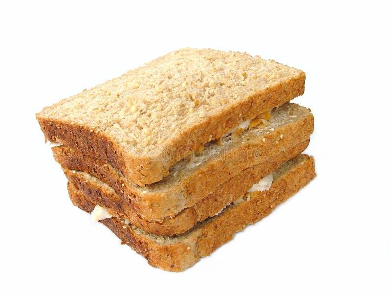 2个三明治火鸡 图库摄影