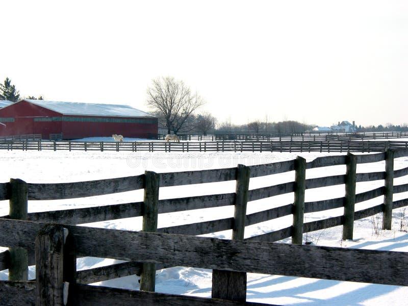 2个农厂范围 免版税库存图片