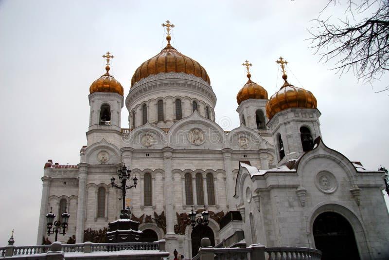2个大教堂基督救主 免版税库存图片
