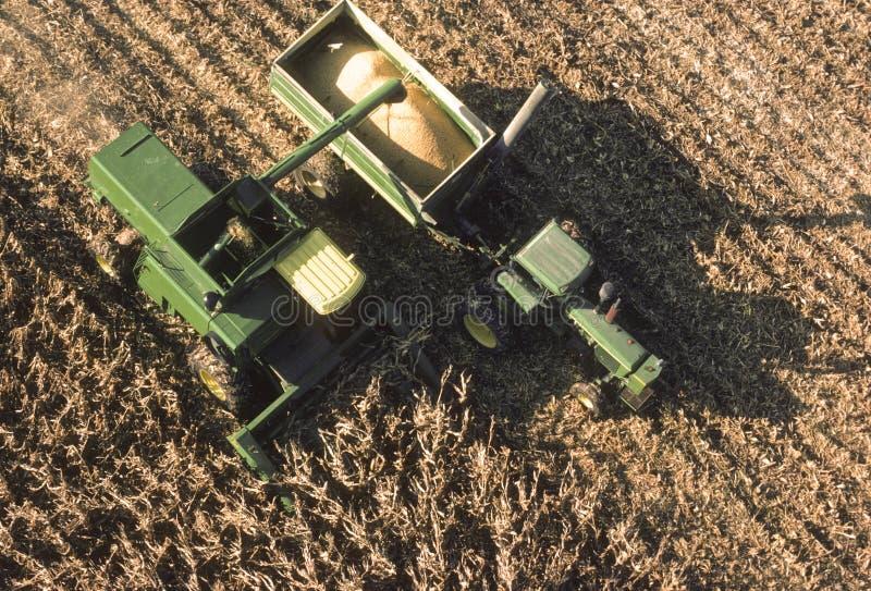 2个天线玉米设备农田视图 免版税库存图片