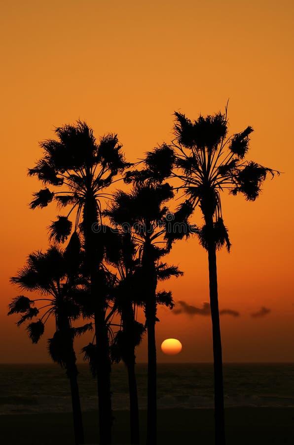 2个海滩日落 库存照片