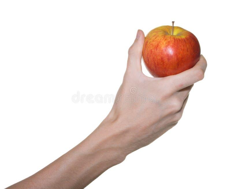 2个苹果现有量男性红色 库存图片