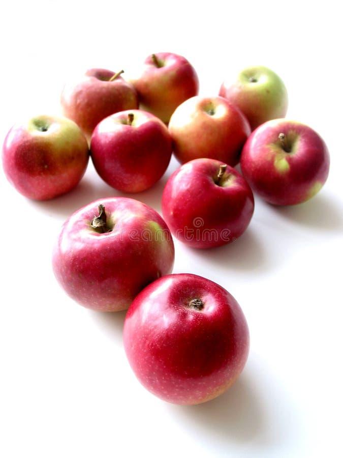 2个苹果 库存图片