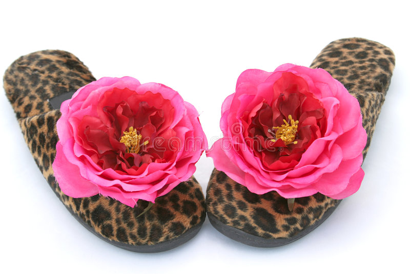 2个迷人的拖鞋