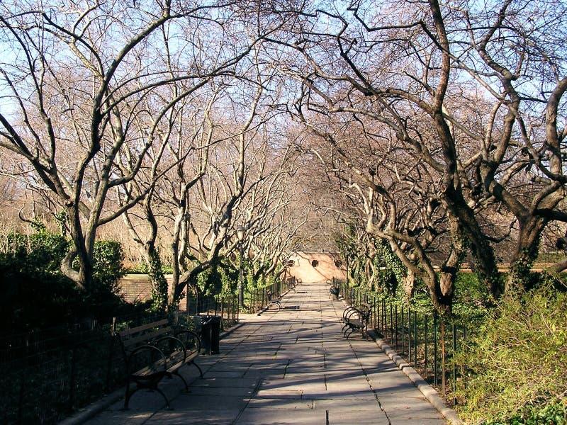 2中央公园风景 图库摄影