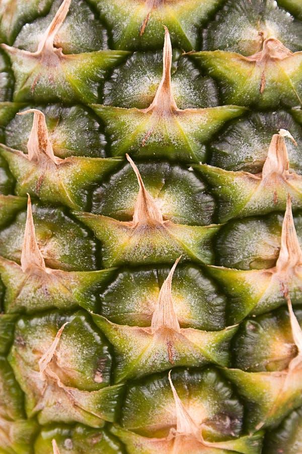 2关闭菠萝 免版税库存照片