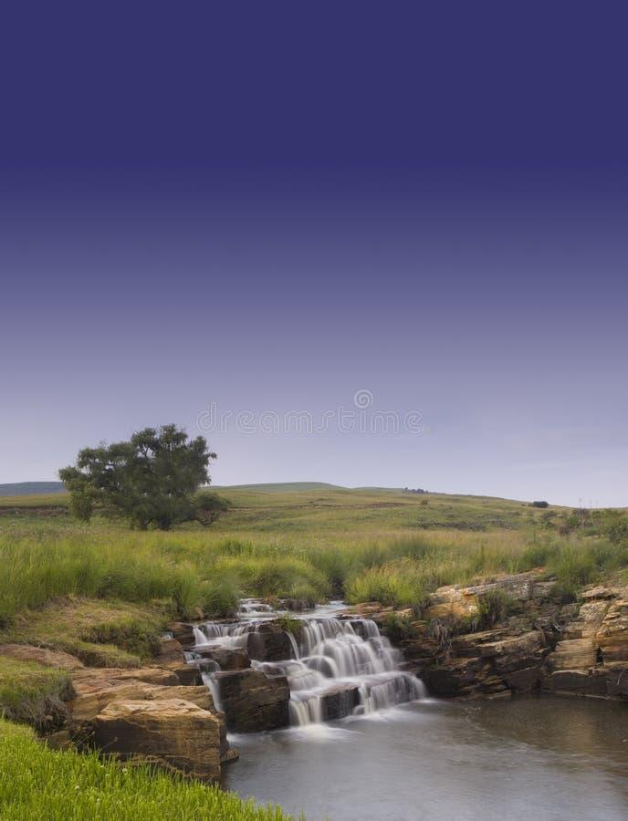 2天空结构树瀑布 免版税库存照片