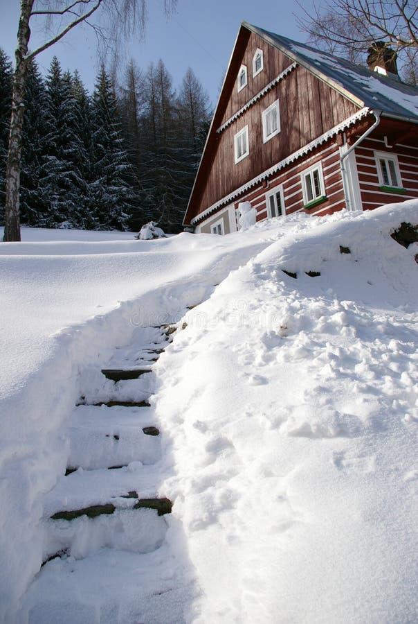 2座巨型山冬天 免版税库存图片