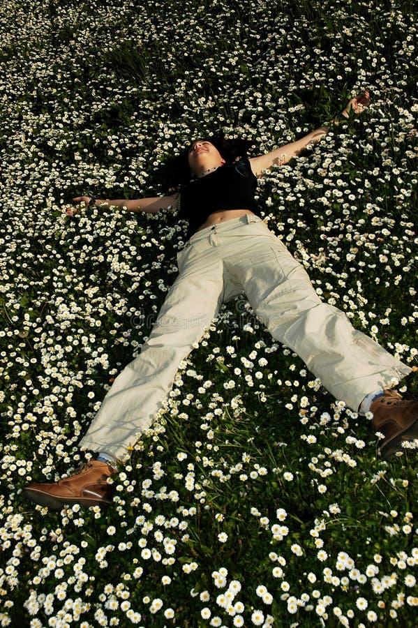 2朵花幸福 免版税库存图片