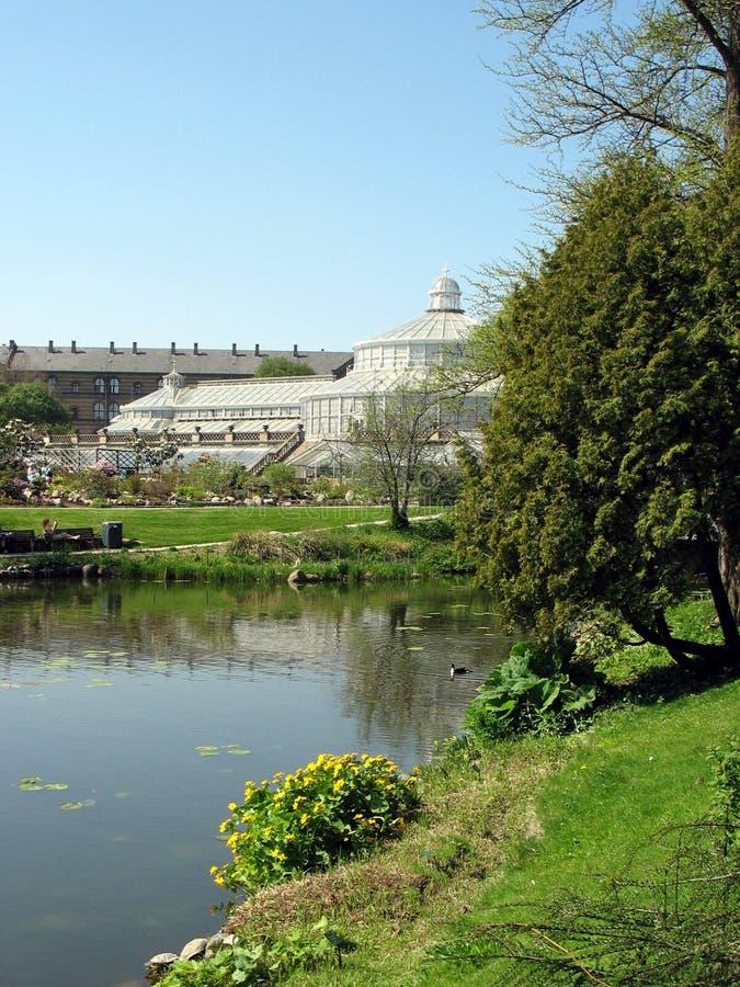 2植物的哥本哈根庭院 免版税图库摄影