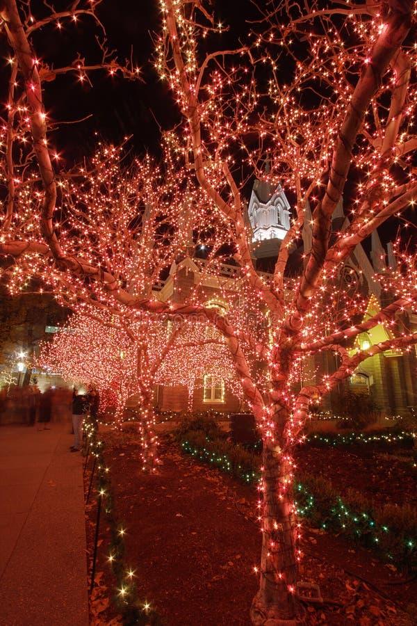 2盏圣诞灯晚上 免版税库存照片