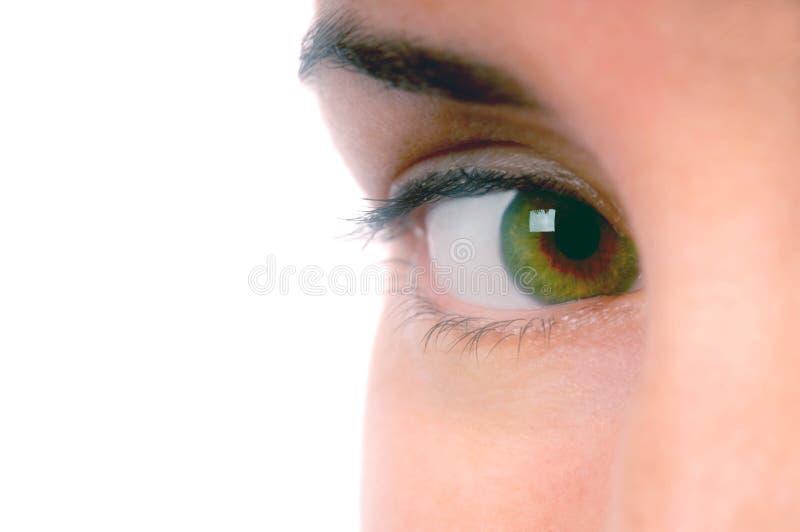 2眼睛获得了我您 免版税库存照片