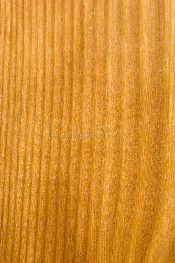2纹理木头 免版税库存图片
