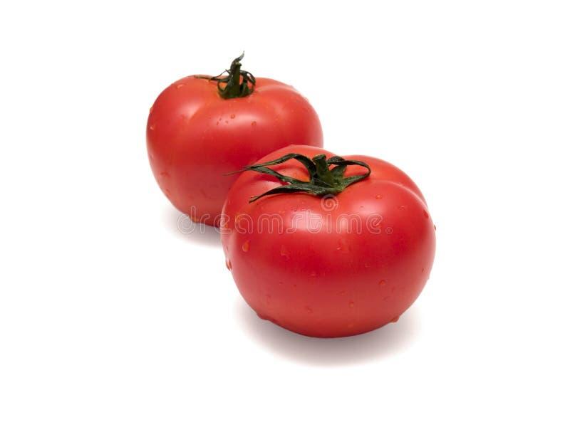 2蕃茄 免版税库存图片