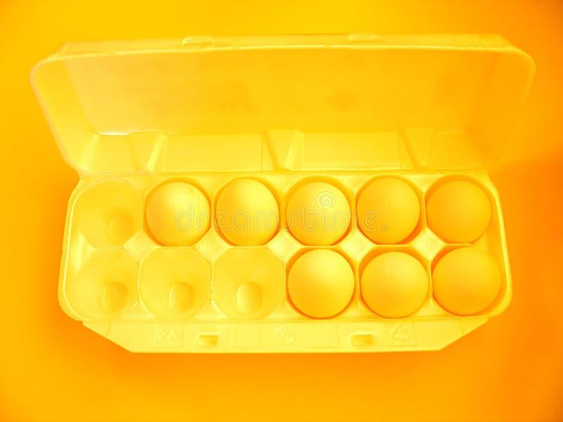 2 αυγά στοκ εικόνες με δικαίωμα ελεύθερης χρήσης