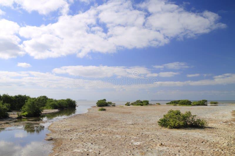 2 залив florida стоковое фото rf
