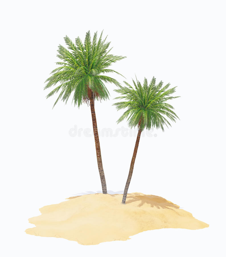 2 ладони на острове иллюстрация штока