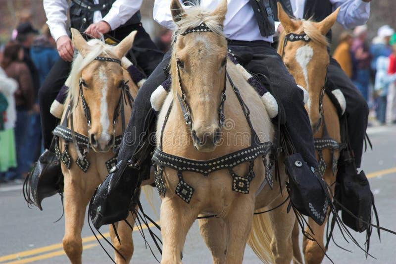 2 лошади ковбоев стоковые фотографии rf