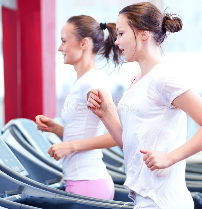 2 молодых sporty женщины бегут на машине стоковое изображение rf