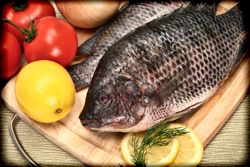 2 сырцовых рыбы Tilapia в фотоснимке типа сбора винограда стоковое изображение rf