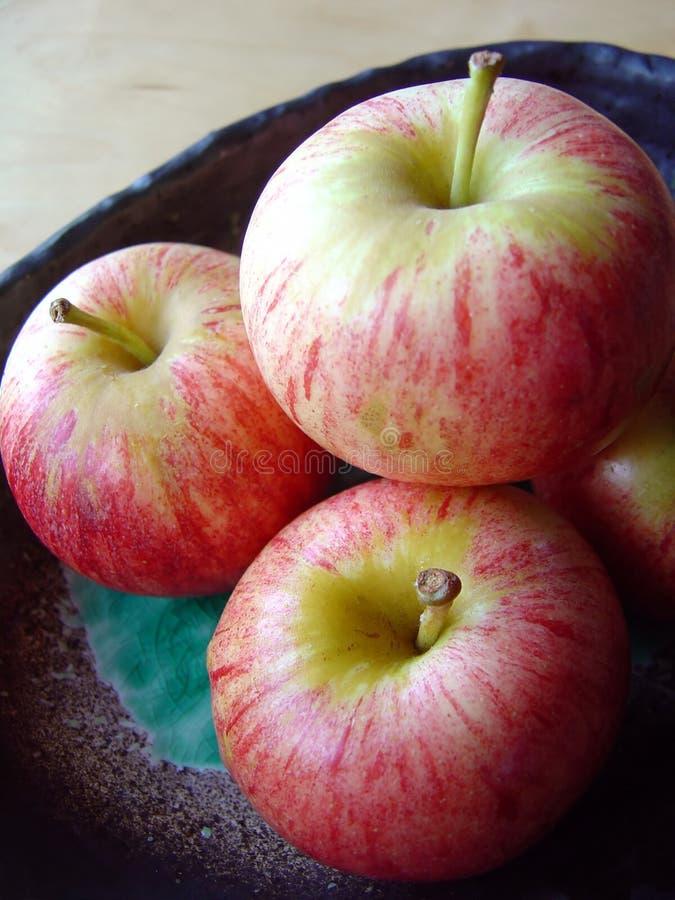 2 яблока стоковые изображения