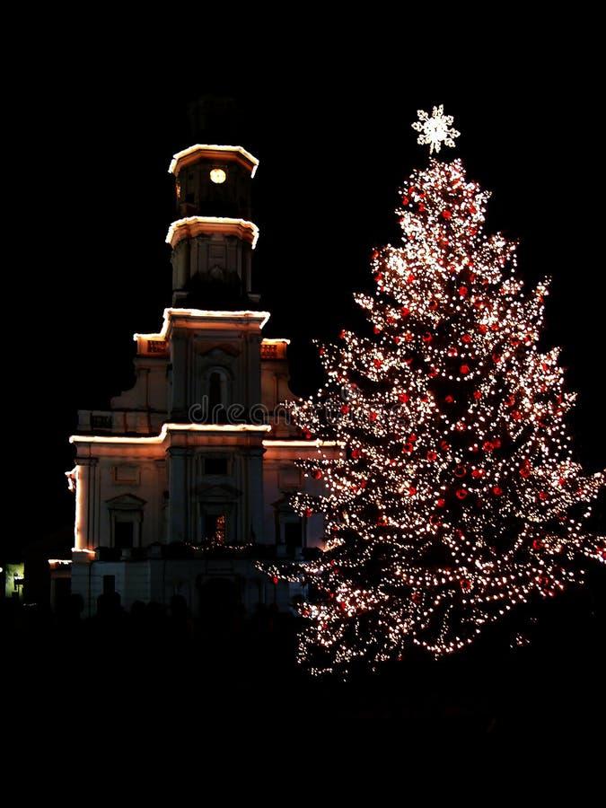2圣诞节城市晚上结构树 图库摄影