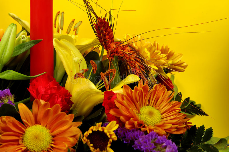 2朵花节假日 图库摄影