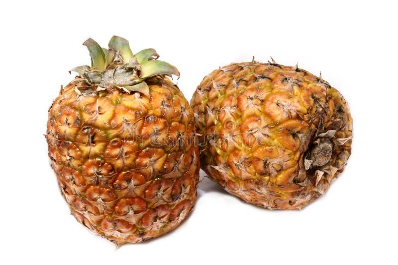 2 ananassen samen royalty-vrije stock foto's