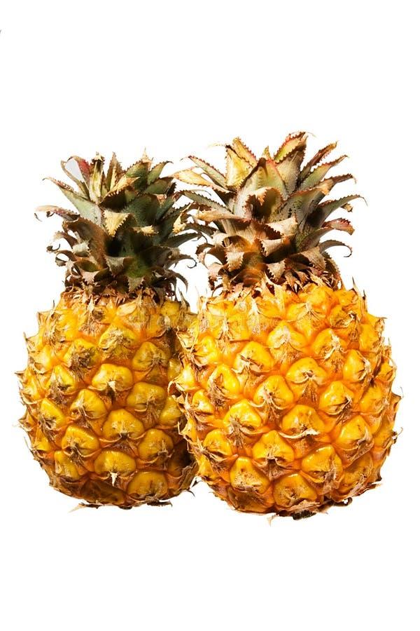 2 ananasy obrazy stock