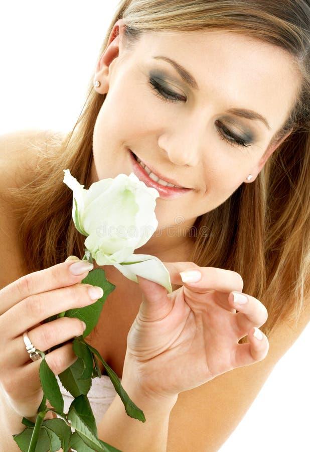 2 białe róże obrazy royalty free