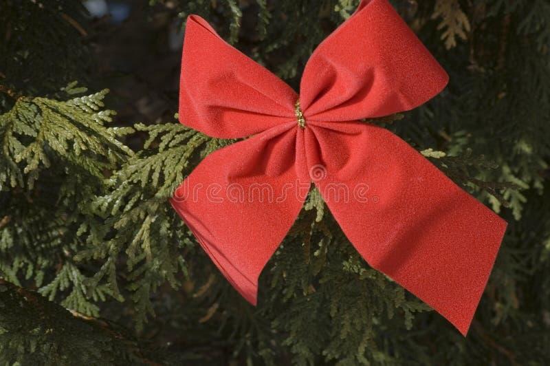 2 bożego narodzenie czerwonego bow zdjęcie stock