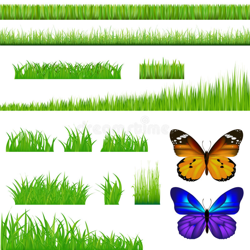 Free 2 Butterflies And Green Grass Set. Vector Royalty Free Stock Photography - 14891177